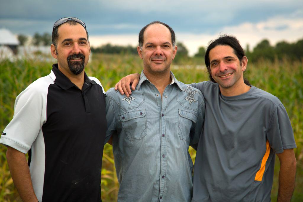 Les frères Darren, Ryan et Jarrod Goldin, copropriétaires d'Entomo Farms.