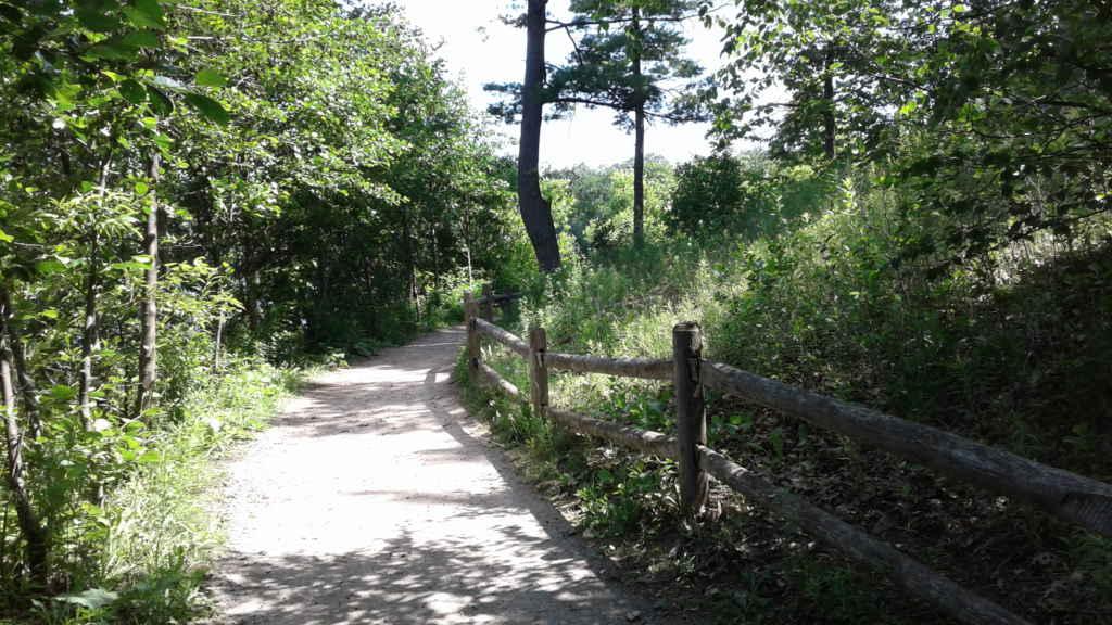 Aventurez-vous dans l'aire de conservation de Heart Lake pour vous ressourcer.