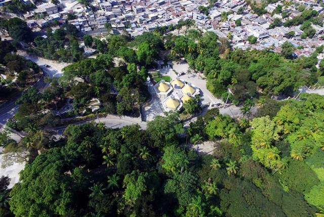 Haïti, plantes médicinales