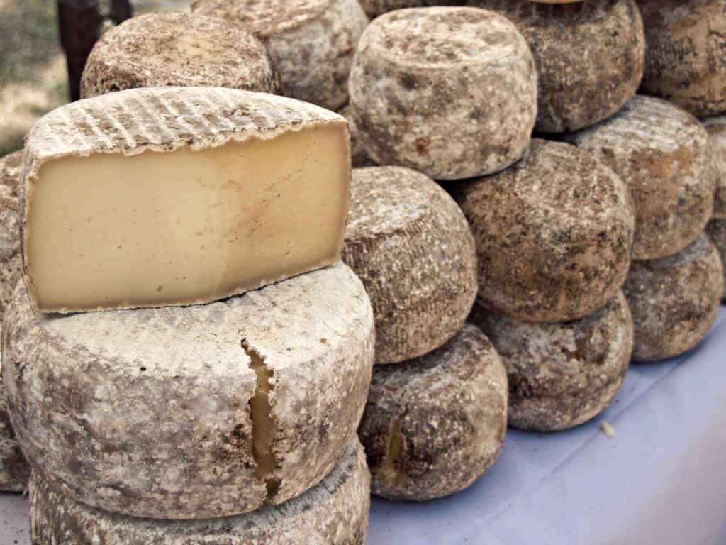 Fabrication fromage en Corse