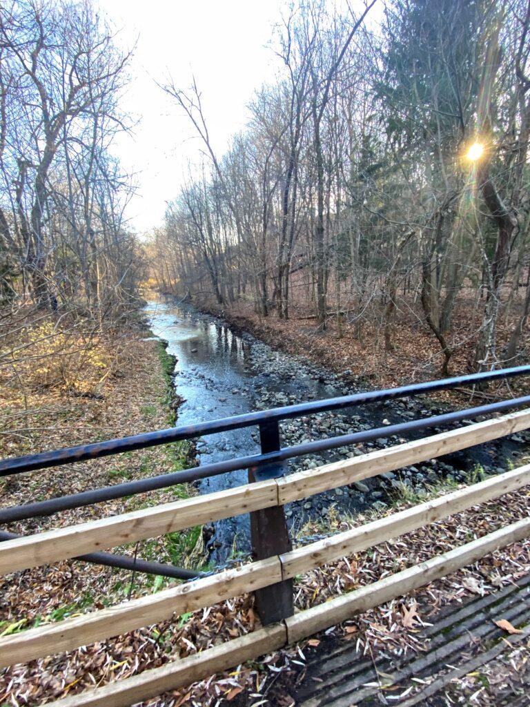 Warden Woods Scarborough Junction balade marche randonnée sentier Taylor-Massey Creek
