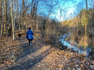 Warden Woods Scarborough Junction balade marche randonnée sentier Taylor-Massey Creek