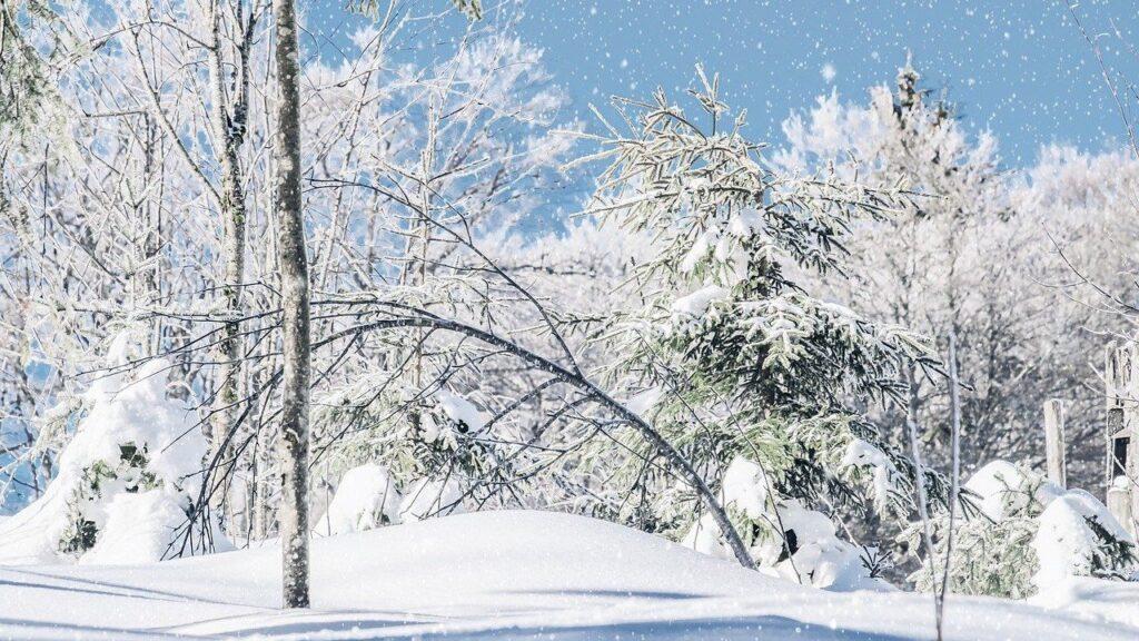 À partir de mardi, les jours rallongent — Solstice d'hiver