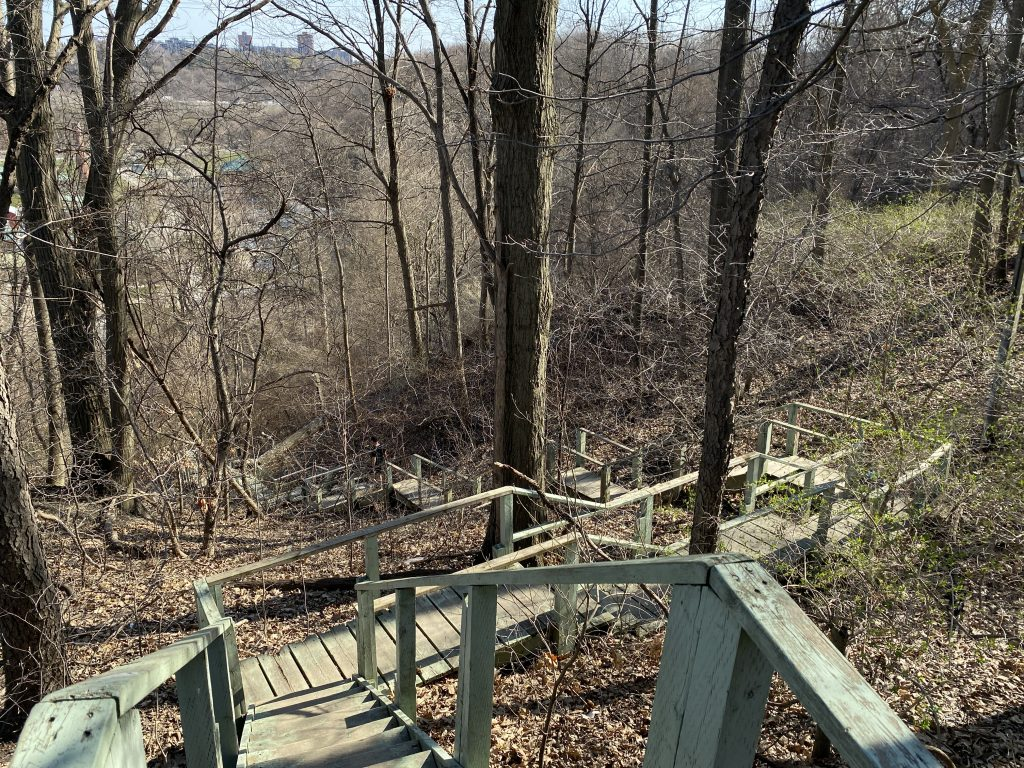 Crothers Woods