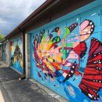 Little Italy, papillons, David Suzuki Butterflyway