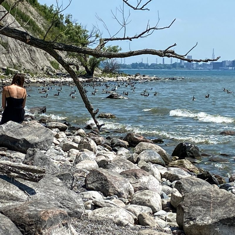 Beachpoint Promenade, Pickering, Frenchman's Bay, Rouge Bay