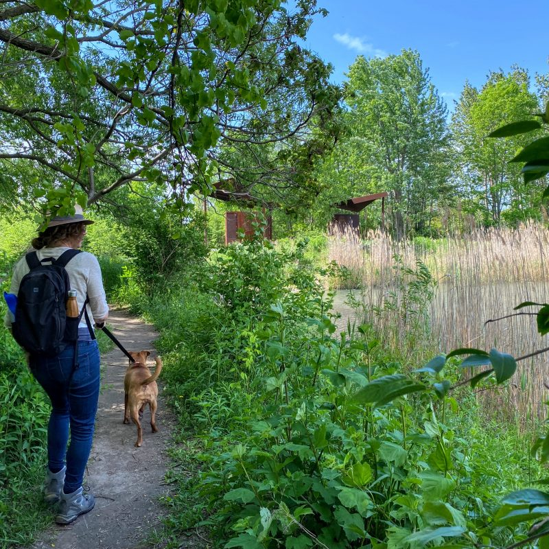 Scarborough, East Point Park Bird Sanctuary, sanctuaire d'oiseaux
