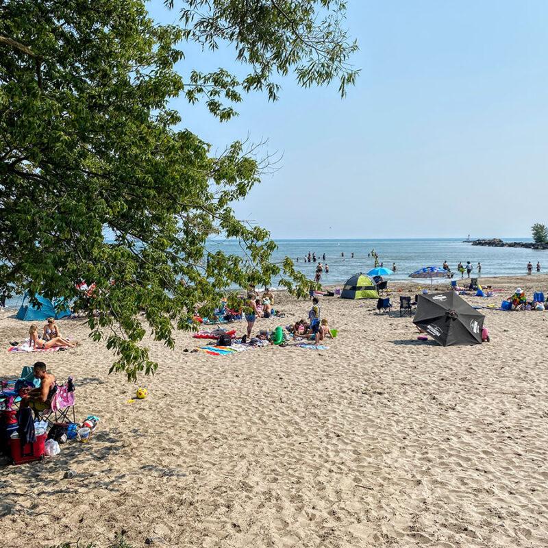 Port Hope, plage, marais